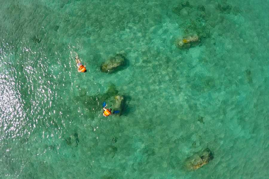 Cancun Vacation Experts TOUR DE ESNÓRQUEL EN COZUMEL