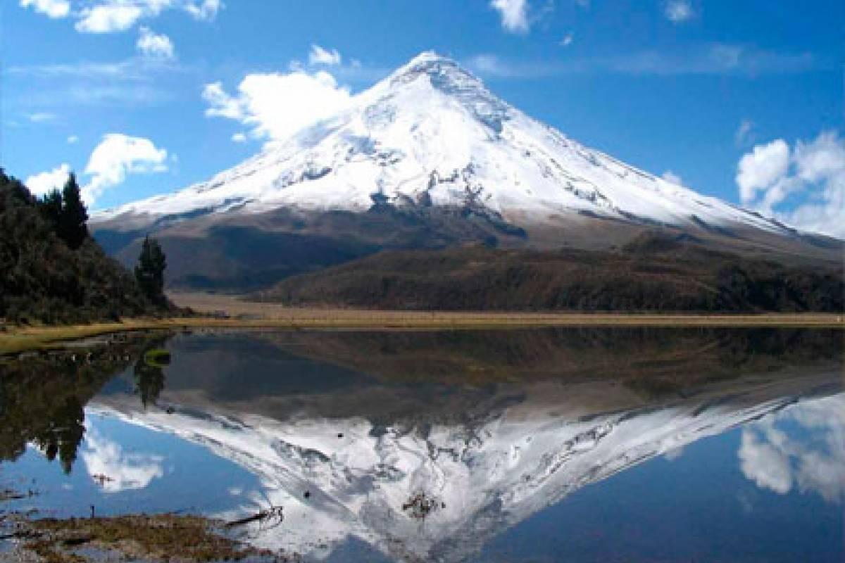 Gray Line Ecuador Andes, Coast & Galapagos