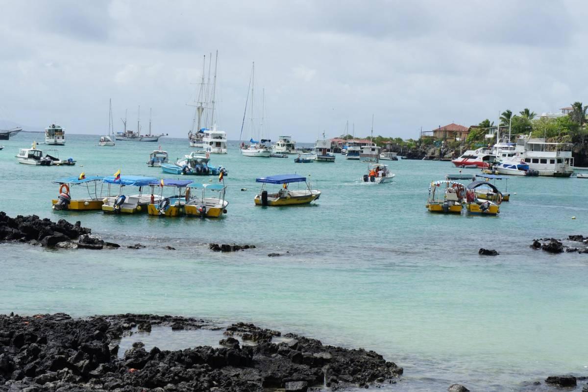 Gray Line Ecuador Galápagos Flash