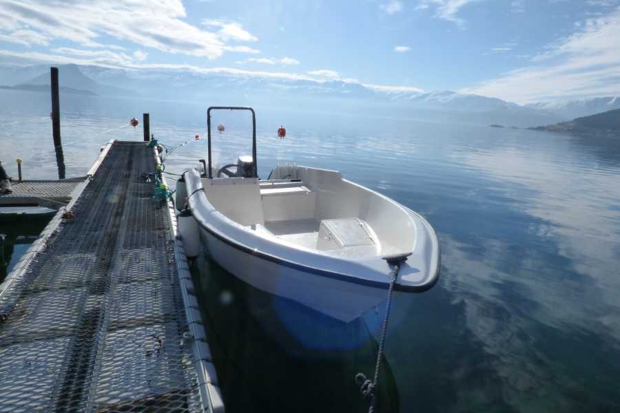 Hardanger Feriesenter AS Boat rental - Enes 25 hp fishing boat