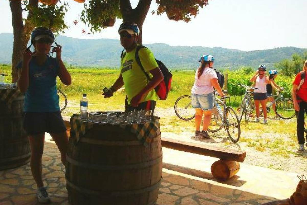 Nature Trips Dubrovnik One Day Tour - Bike Ride & Wine Tasting