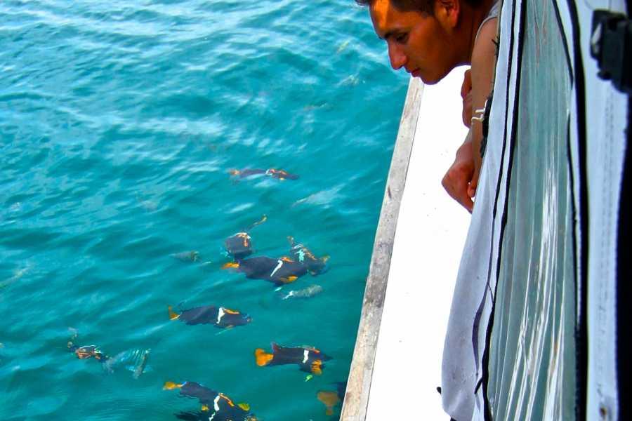 PALO SANTO TRAVEL GUAYAQUIL | TOUR ISLA DE LA PLATA | PUERTO LOPEZ | ECUADOR