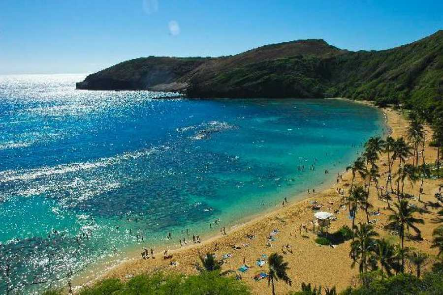 "Dream Vacation Builders Plan Aloha-1: 3 Nights/4 Days- ""Oahu"" Package"
