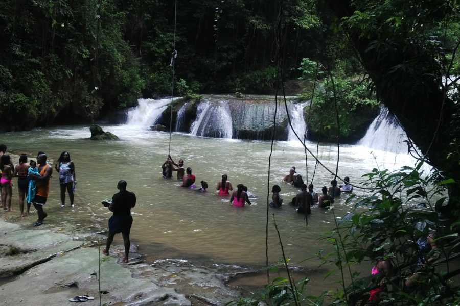 Route 876 Tours YS Falls Day Excursion and Sightseeing Tour from Montego Bay