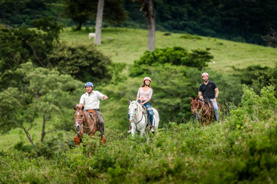 Krain Concierges Borinquen Canopy & Hot Springs Experience