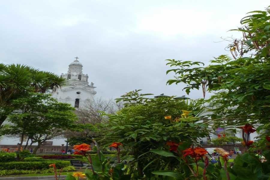 Gray Line Ecuador Quito, Galápagos y Guayaquil