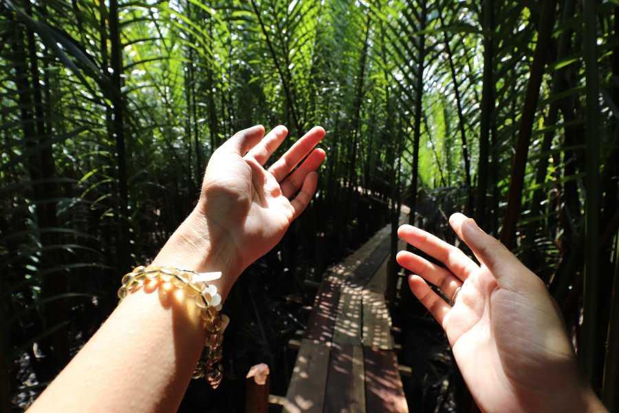 Krain Concierges Monteverde Cloud Forest
