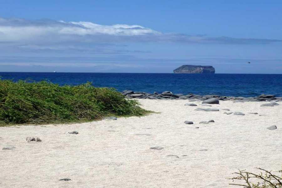 Gray Line Ecuador Galápagos Islas Encantadas