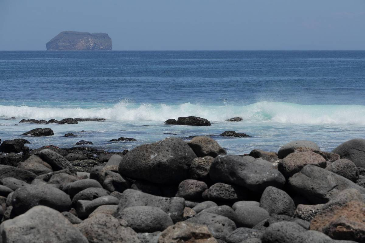 Gray Line Ecuador Discover Galapagos