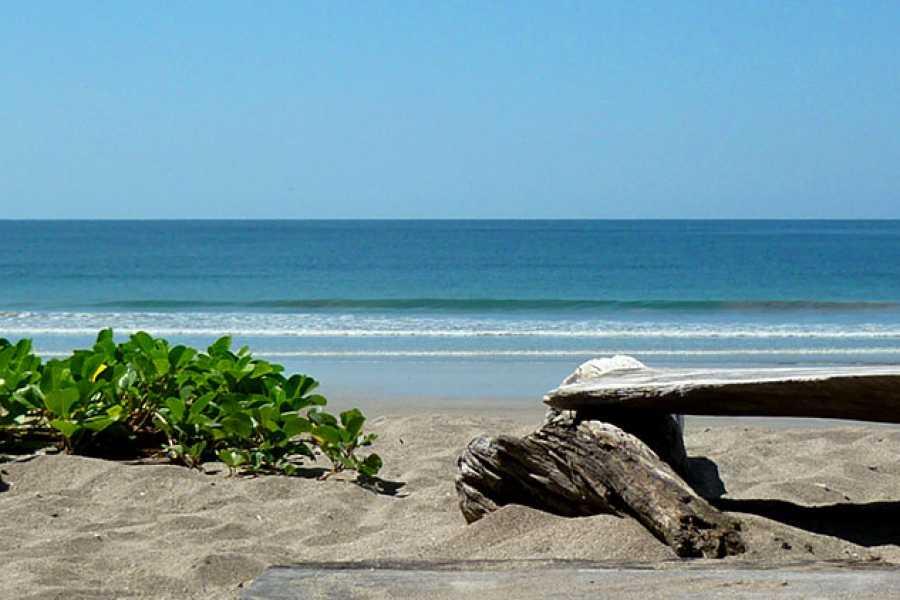 Krain Concierges Tamarindo Mangrove & Estuary Tour