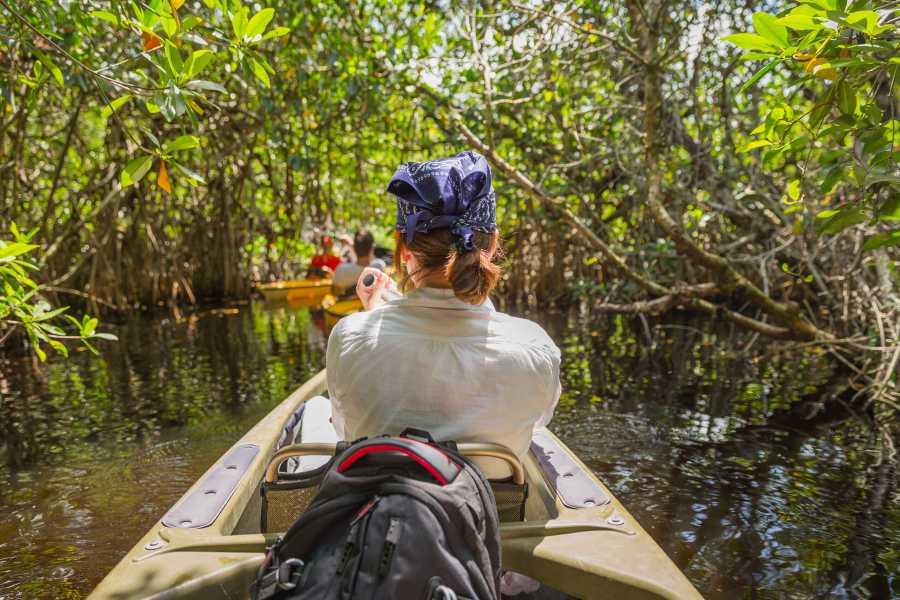 Krain Concierges Tamarindo Mangrove & Estuary Boat Tour