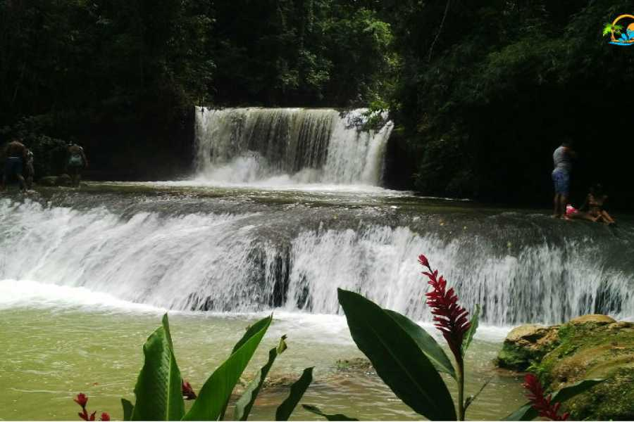 Route 876 Tours Black River Safari and YS Falls Day Excursions from Ocho Rios
