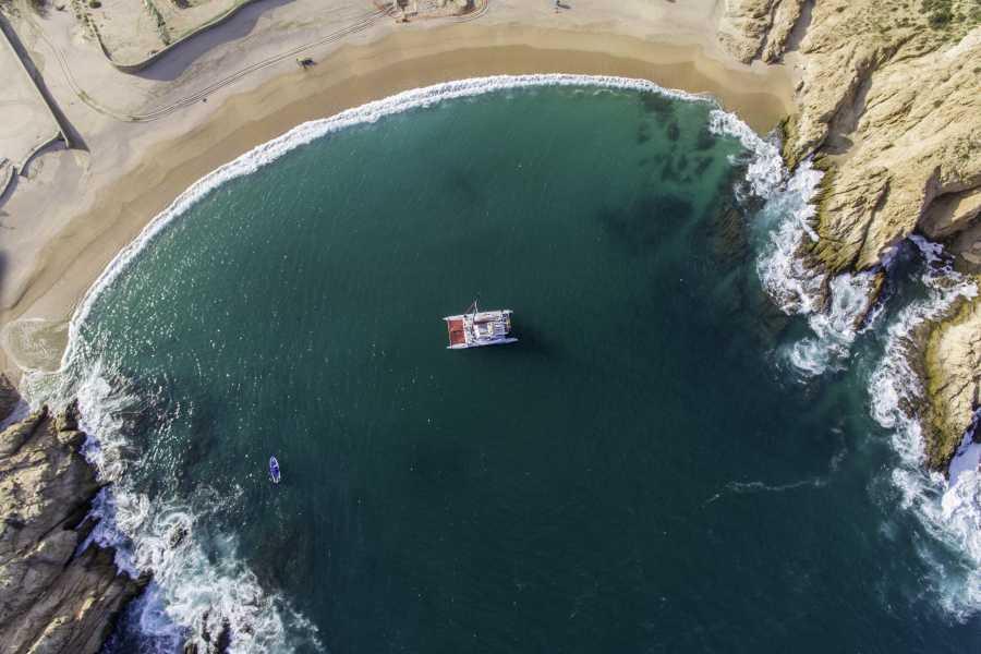 Pacifico Tours SA de CV Snorkel at Sunset