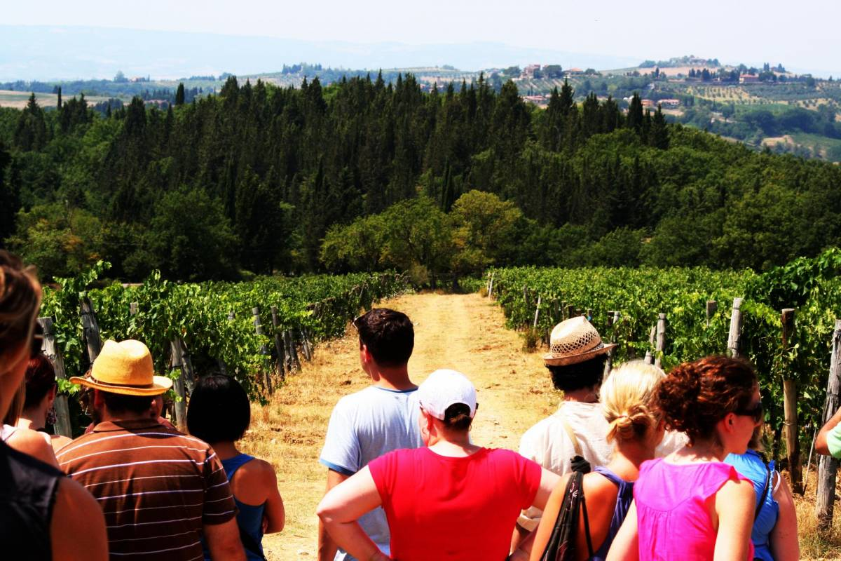 Tuscany on a Budget tours THE TASTE OF TUSCANY afternoon tour