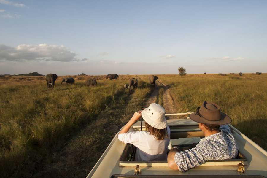 ECO-AFRICA CLIMBING 4 DAYS CAMPING SAFARI