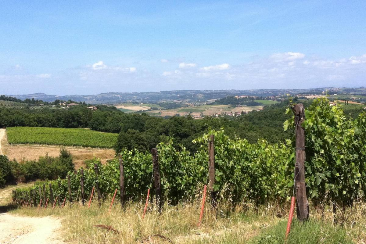 Tuscany on a Budget tours LET'S GO HORSEBACK RIDING IN TUSCANY