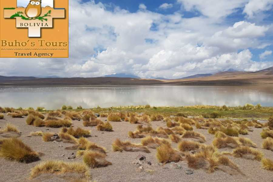 buhostours UYUNI 2 DAYS/1 NIGHT