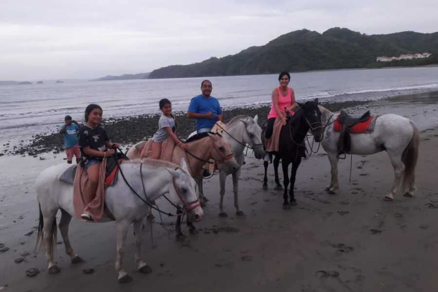Tour Guanacaste Beach Horseback Riding Tour