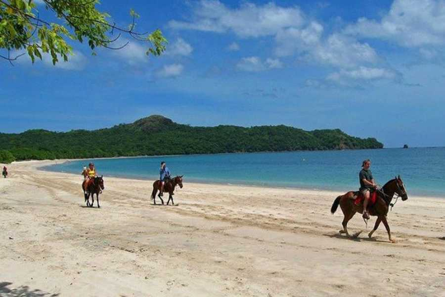 Tour Guanacaste On-Line Horseback Riding Tour
