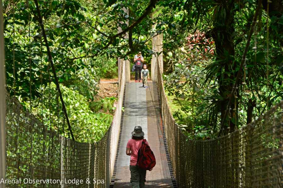 Tour Guanacaste On-Line Arenal Hiking and Hot Springs Combo