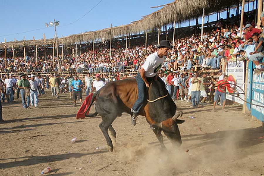 Tour Guanacaste Rodeo Tour