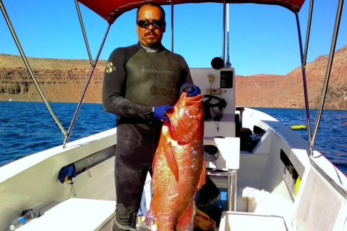 Tour Guanacaste Sport Fishing Tours