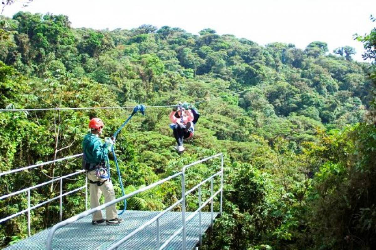 Tour Guanacaste Monteverde SkyTrek