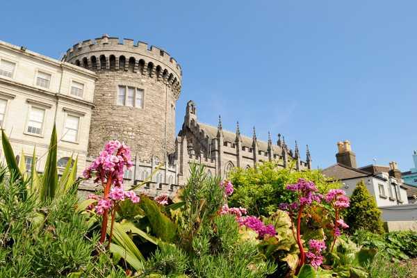 3-hour Dublin Private City Tour
