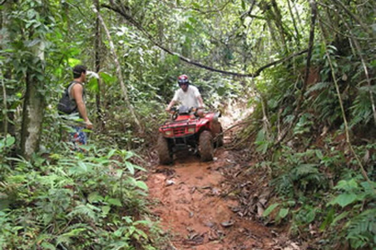Tour Guanacaste ATV Canopy and Monkey Sanctuary Combo Tour