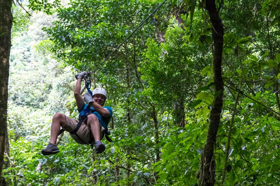 Krain Concierges ATV Canopy Zip-line & Monkey Sanctuary