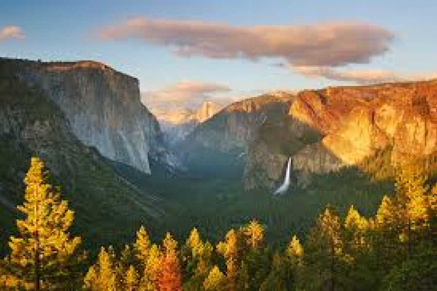 Dream Vacation Builders Total Yosemite Experience & Giant Sequoia Trees (Multilengual Tour)