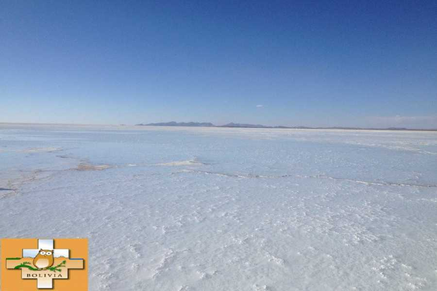 buhostours SALAR DE UYUNI (3 DAYS-2 NIGHTS)
