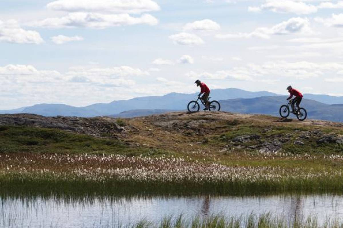 Puls Camp Åre Rent XC bike