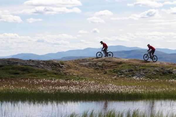 Camp Åre Hyra XC-Cykel