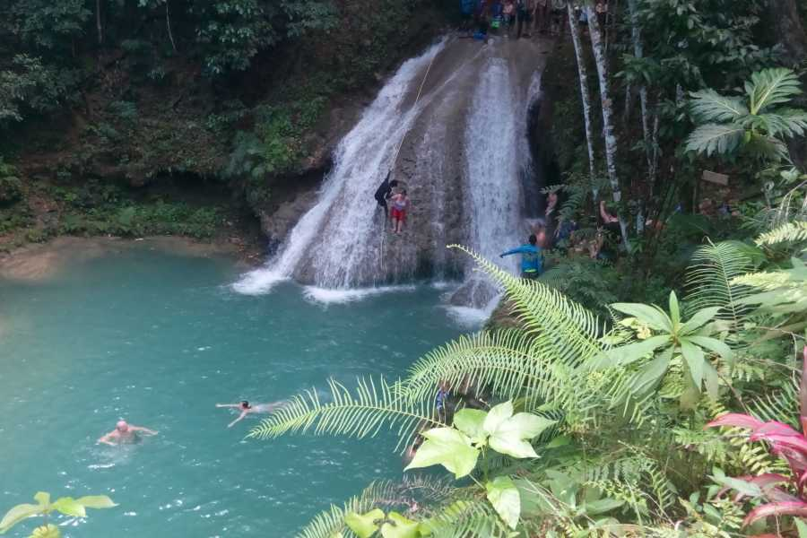 Route 876 Tours Island Gully Falls and Culinary Tour from Montego Bay