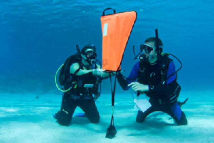 Blue Bay Dive & Watersports PADI Advanced Open Water Kurs