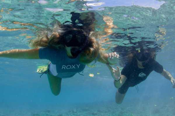 1-hour snorkel class & tour