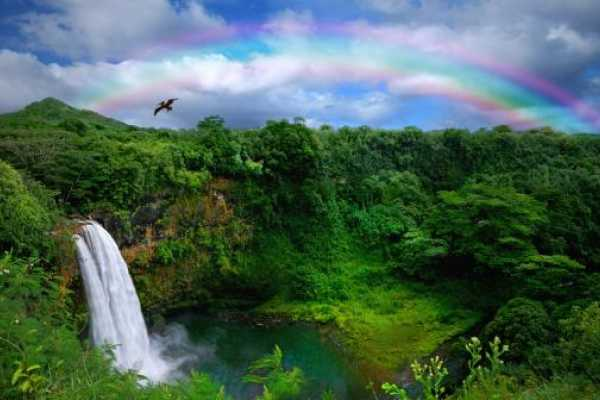 Dream Vacation Builders One Day Kauai Movie Tour