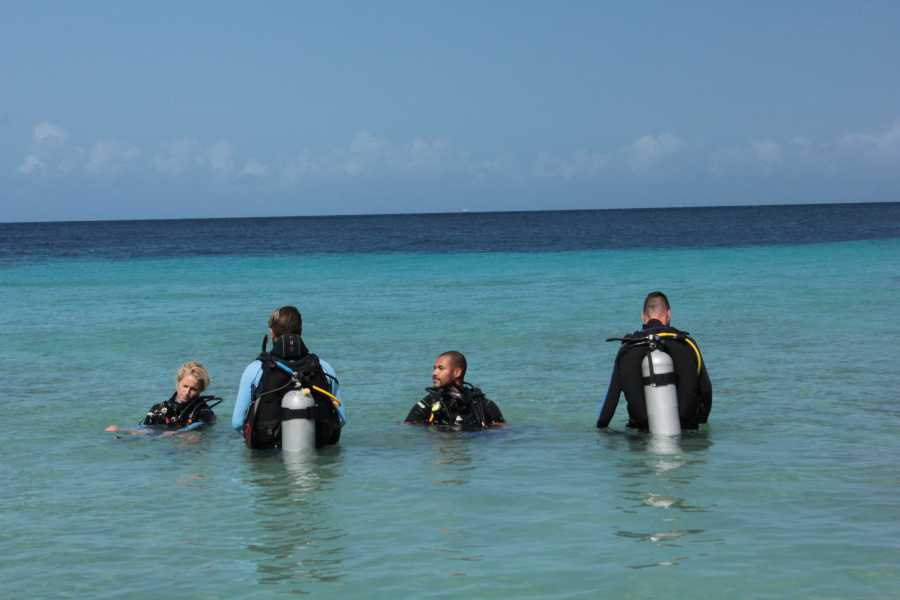 Blue Bay Dive & Watersports PADI Assistent Instructor Cursus