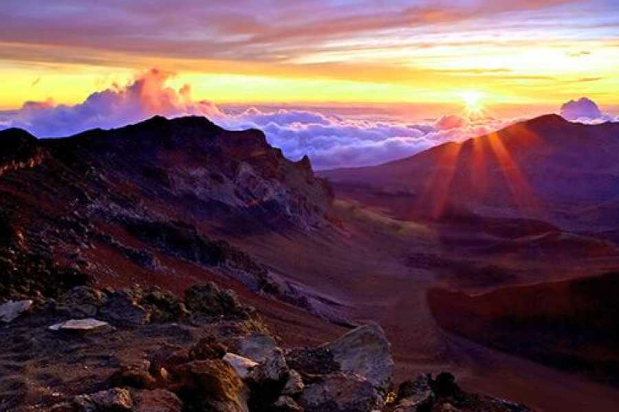 Dream Vacation Builders Maui-Haleakala Sunrise Tour