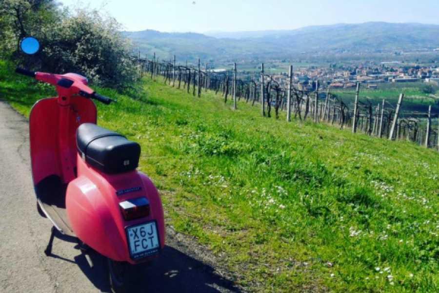 Bologna Welcome Vespa: around the hills of Bologna