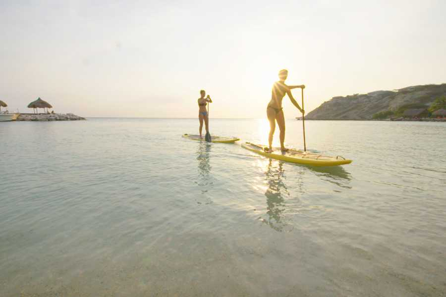 Blue Bay Dive & Watersports 1 Hour rental SUP