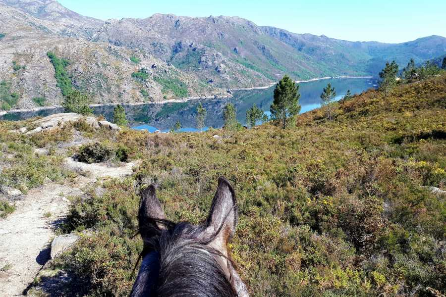 Gerês Holidays 3D/2N Equestrian Tourism at Gerês