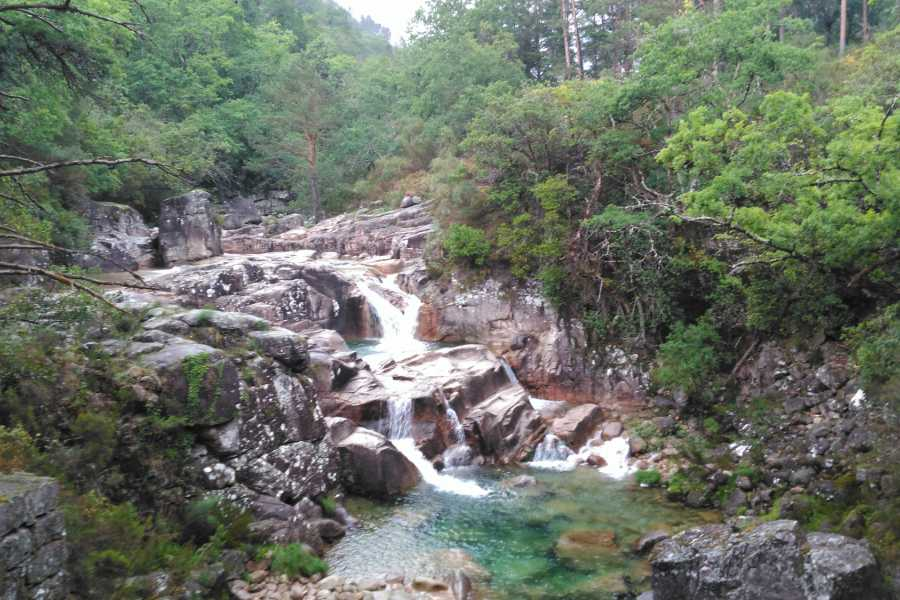 Gerês Holidays 7D/6N Pet Friendly Holidays