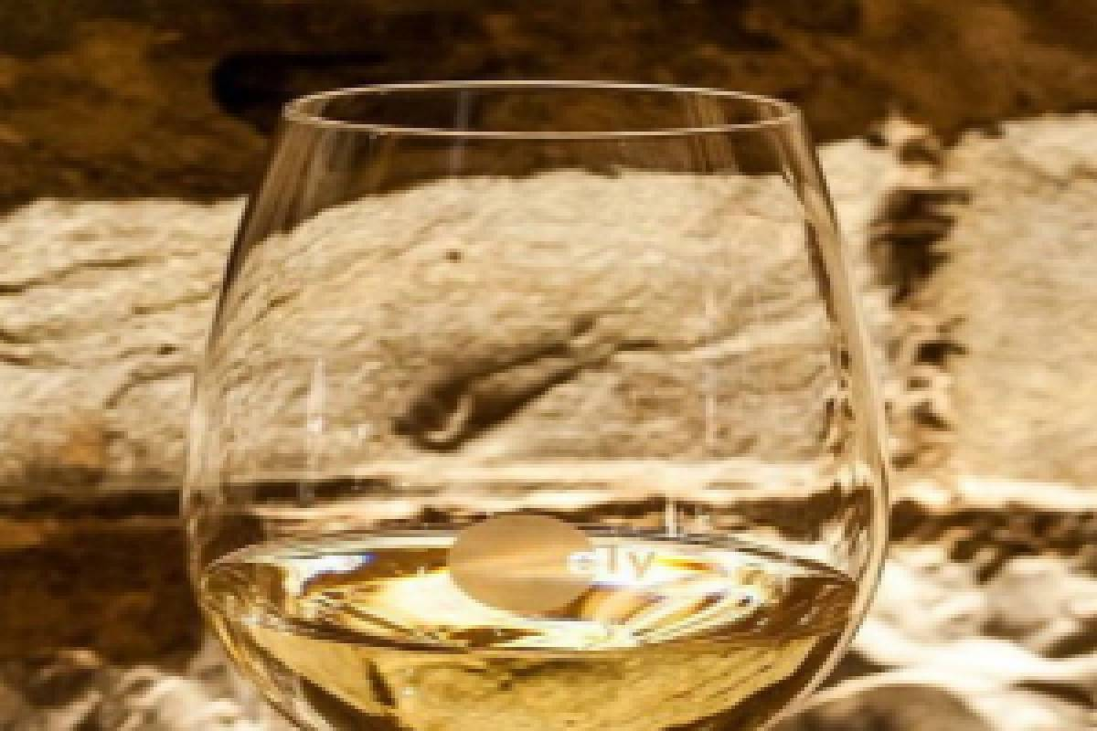 Good Food Ireland Austrian Wine Tasting Class at ely bar & brasserie