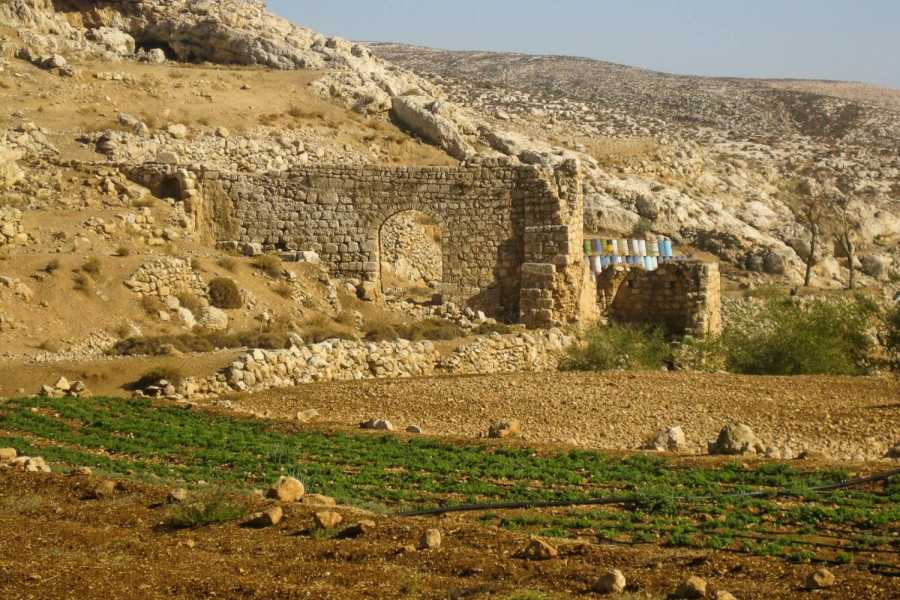 Siraj Center Saturday 9 of March 2019 - Duma to Kafr Malek - Masar Ibrahim Thru Hike