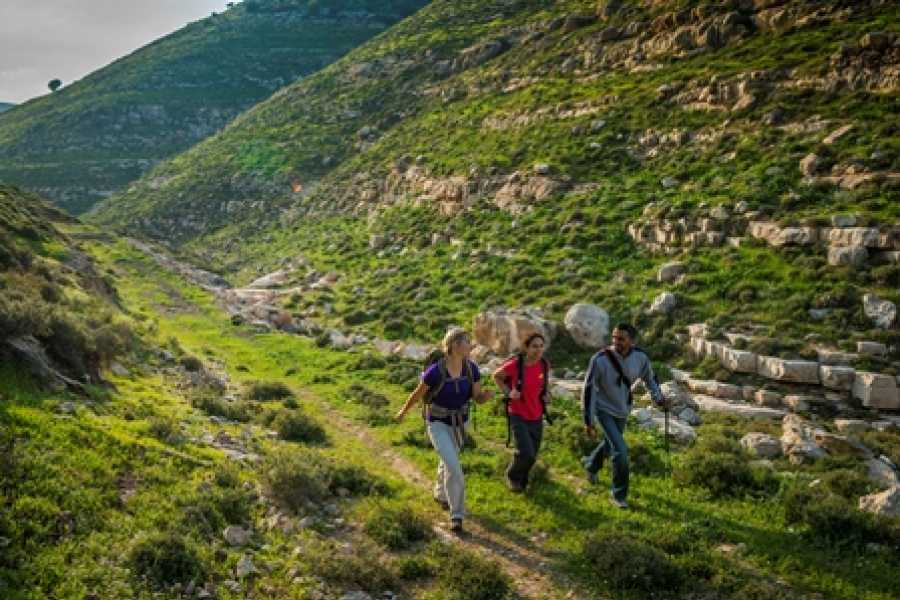 Siraj Center Saturday, 23 of November 2019 - Dura to As-Sura - Masar Ibrahim Thru Hike