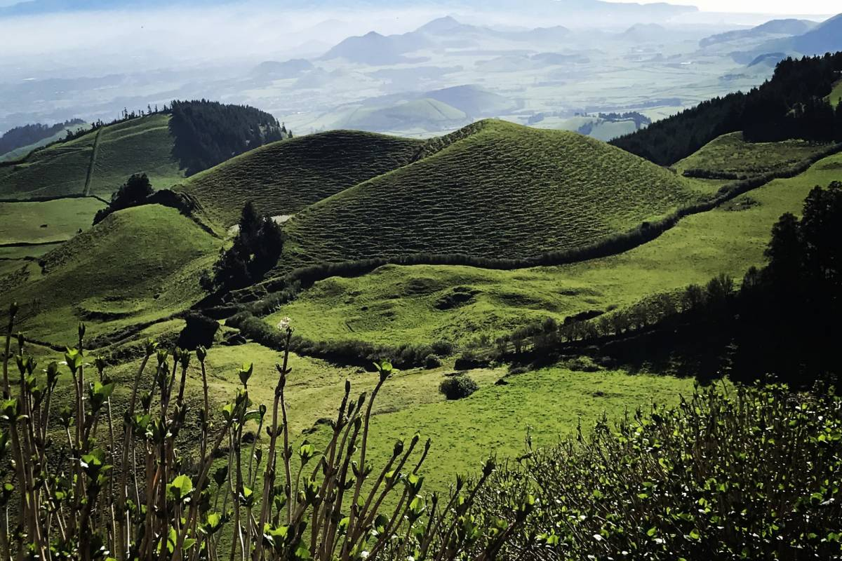 Nature Trips Azores: the colours of Nature,Sport and Wellness