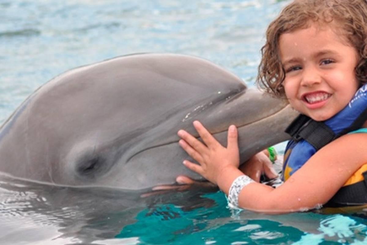 Tours & Tickets Operador Turístico Nado con delfines