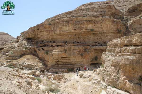 14 - 15 March 2020 Sea Level Community to Tel Al-Qamar,  Thru Hike